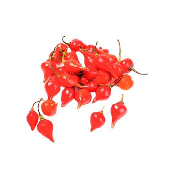 pimenta-biquinho