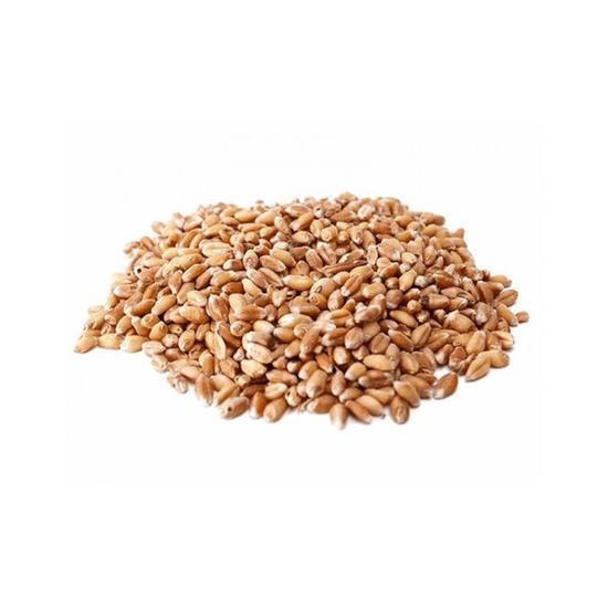Trigo Em Grão (nacional) - 100g